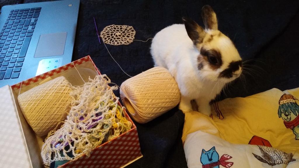 rabbit interfering with crochet